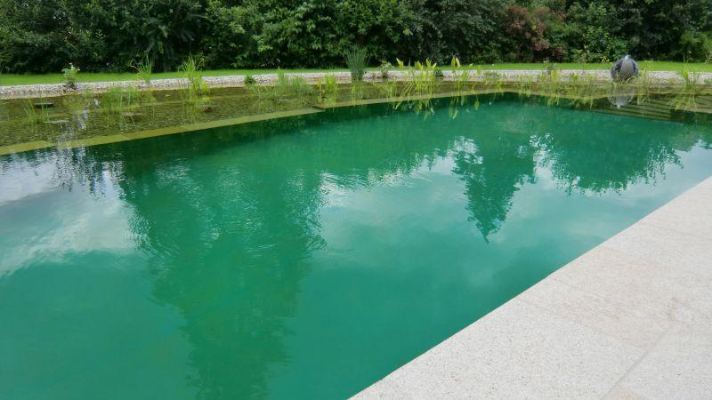 Schwimmteichabdichtung mit Teichfolie