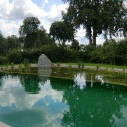 Schwimmteich in Geisling Teilansicht