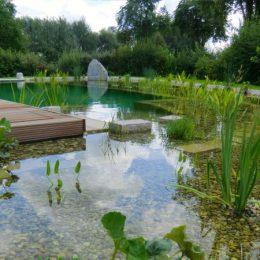 Schwimmteich mit Filterzone in Geisling