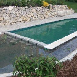 Grüne Teichfolie für Schwimmteich