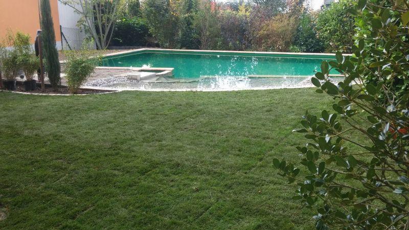 Strahlt Ruhe aus: Rasen und Teich