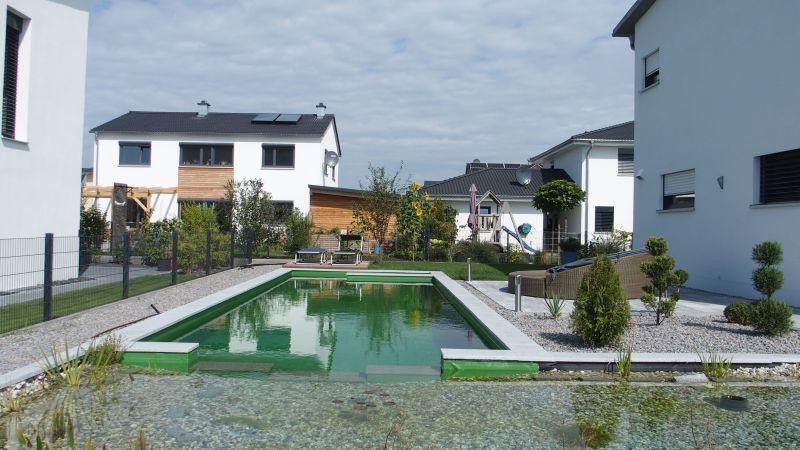 Gesamtbild Schwimmteich Bad Abbach