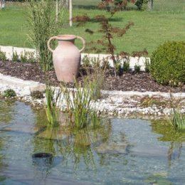 Bepflanzung Filterzone Schwimmteich
