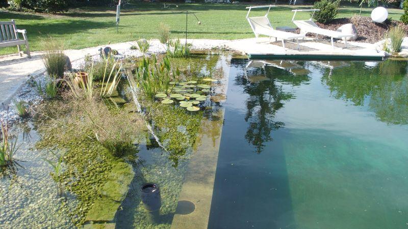 Teichfolie für Schwimmteich mit Uferzone