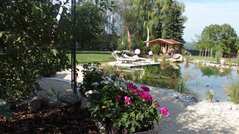 Harmonisches Miteinander: Schwimmteich und Gartengestaltung