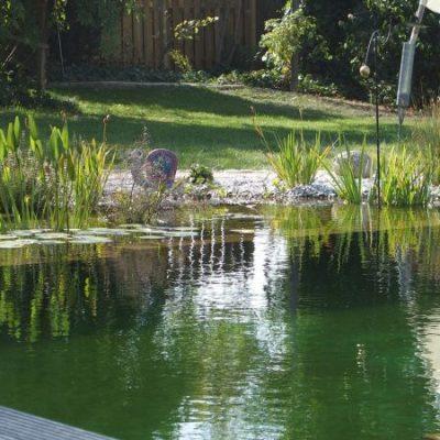 Wunderschöne Wassergärten von Pool & Wassergärten Wild in Regensburg