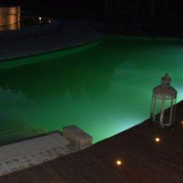 Lichtpunkte der Gartengestaltung