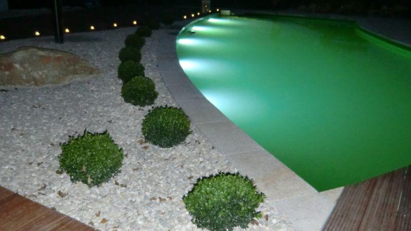 Schwimmteich bei Nacht