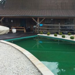 Schwimmteich vor Holzhaus