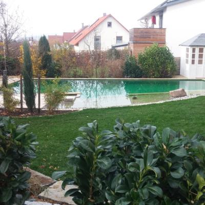 Schwimmteich im Herbst