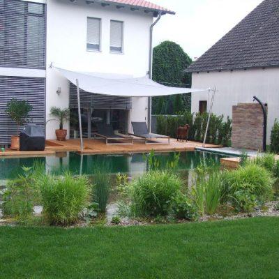 Harmonisches Gesamtbild: Haus, Schwimmteich, Gartengestaltung